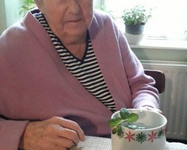 Seniorka – uczestniczka DDP siedzi przy stole, patrzy na kubek, w którym jest herbata z miętą