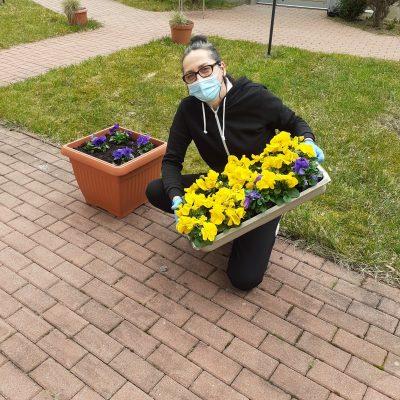 Terapeutka Magdalena Poraj-Górska klęka na jednym kolanie na chodniku z czerwonej kostki brukowej. W wyciągniętych rękach trzyma prostokątne pudełko pełne kwiatów. Pudełko jest wykonane z szarego plastiku. Kwiaty, które w nim widać, to w większości żółte bratki. Jest też kilka sztuk bratków fioletowych. Obok terapeutki stoi brązowa donica z zasadzonymi fioletowymi bratkami. W tle widać trawnik