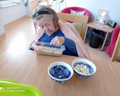 Seniorka siedzi przy drewnianym stole. Z plastikowego pudełka wybiera białą fasolę i przekłada do niebiesko-białej miseczki