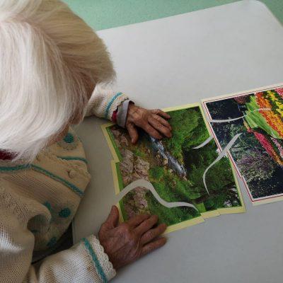 Przy stole siedzi seniorka. Układa obrazek z pociętych elementów. To pejzaż, który przedstawia zielony las i płynący strumyk. Obok widać ułożony obrazek z rzędami kolorowych kwiatów