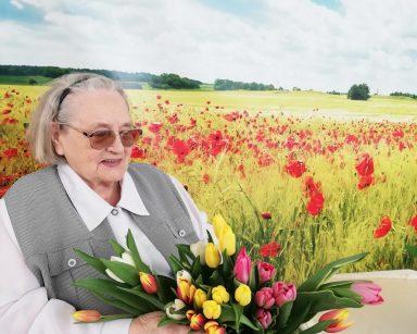 Przy stoliku siedzi uśmiechnięta seniorka. W rękach trzyma bukiet żółtych, pomarańczowych, białych i różowych tulipanów. Seniorka siedzi na tle fototapety przedstawiającej słoneczny dzień na polu z jasnozielonym zbożem i czerwonymi makami