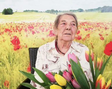 Seniorka siedzi na krześle. W rękach trzyma bukiet żółtych, pomarańczowych, białych i różowych tulipanów. Seniorka siedzi na tle fototapety przedstawiającej słoneczny dzień na polu z jasnozielonym zbożem i czerwonymi makami