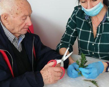 Terapeutka Anna Rzepczyńska siedzi z seniorem przy stole. Senior pomaga jej odcinać gałązki bukszpanu