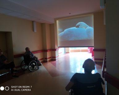 Ciemny korytarz. Na ekranie projektora zbliżenie białego łabędzia. Przed ekranem seniorzy.