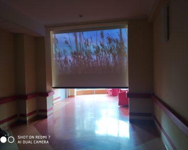 Ciemny korytarz. Na ekranie projektora wysokie trawy na tle niebiesko-różowego nieba.