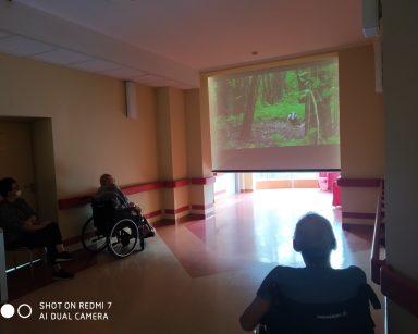 Ciemny korytarz. Na ekranie projektora borsuk w lesie. Przed ekranem seniorzy.