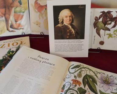 Portret Karola Linneusza. Obok pootwierane książki z rysunkami zwierząt i roślin.