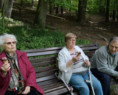 Na ławce w lesie siedzi troje seniorów. Jedzą lody.