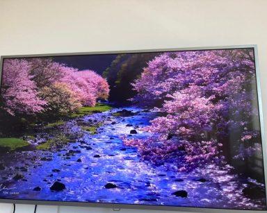 Telewizor. Na ekranie krajobraz. Niebieski strumyk, zielona trawa, drzewa z różowymi kwiatami.