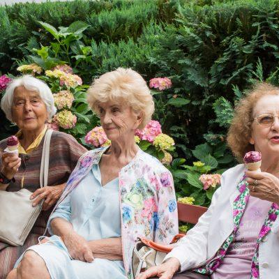 Trzy seniorki na ławce. Mają lody. Za nimi zielone krzewy i hortensje.