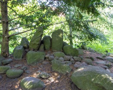 Park Oliwski. Zielone drzewa, przy nich leżą duże kamienie.