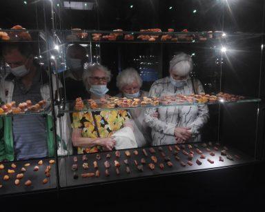Na szklanych półkach w gablocie ułożone różne bryłki bursztynu. Seniorzy oglądają je przez szybę.