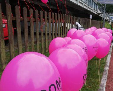 Różowe balony z napisem Dom Pomocy Społecznej w Sopocie przywiązane do płotu. Część umocowana na patyczkach wbitych w ziemię.